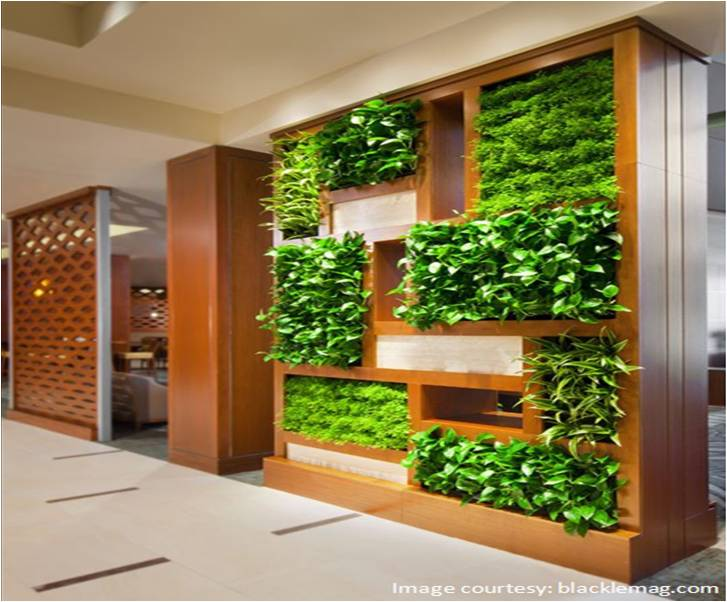 Vertical gardens in our homes and offices jaluk for Garden house office
